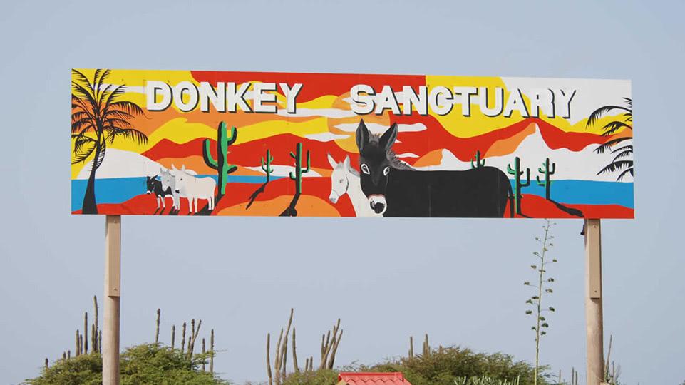 bonaire-donkey-sanctuary-einfahrt