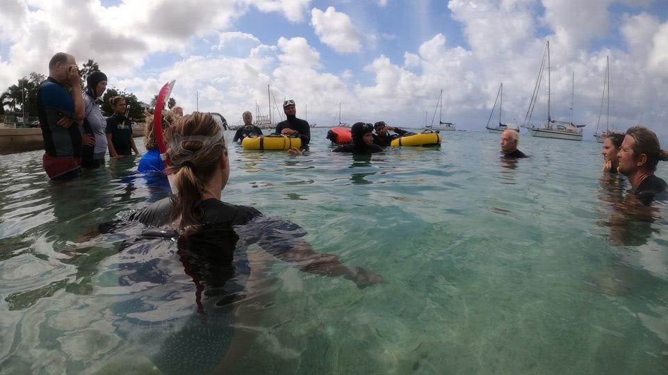 bonaire-freediving-instruktionen-wasser