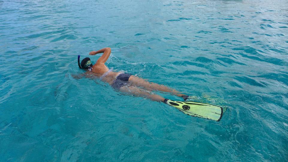 bonaire-mittwoch-nelly-schwimmt