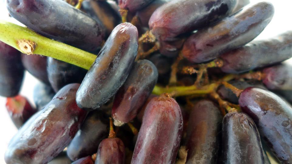 bonaire-mittwoch-trauben