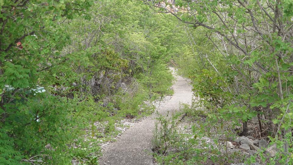 bonaire-nord-teufels-trail
