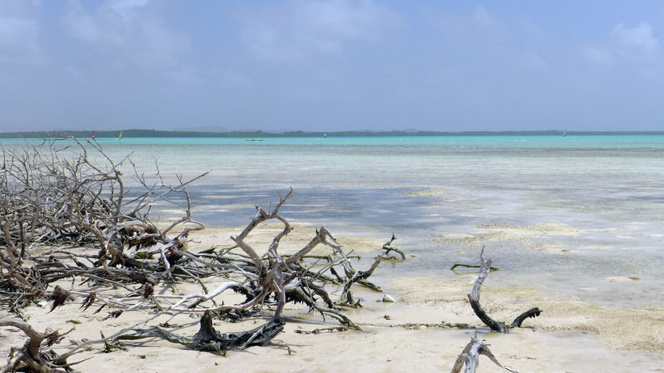 bonaire-sued-beach